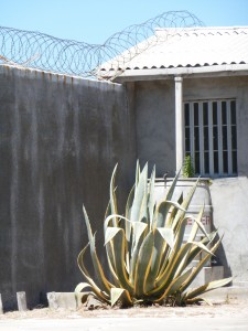 Robben Island cell block